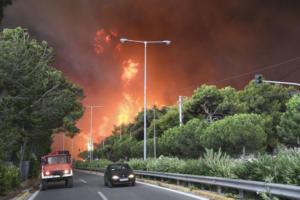 Οργή για το χάος των υπηρεσιών που οδήγησε στην τραγωδία – Αποκαλύψεις για τις ευθύνες