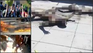 Μεξικό: Θηριωδία! Τραβούσαν βίντεο ενώ καίγονταν ζωντανοί δύο αθώοι! Προσοχή, σκληρές εικόνες