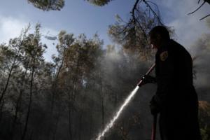 Υπό έλεγχο η φωτιά στη Βραυρώνα