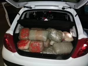 Θεσπρωτία: Κατασχέθηκαν 128 κιλά ινδικής κάνναβης [pics]
