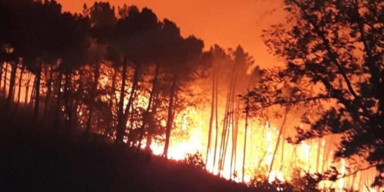Ιταλία: Μεγάλη φωτιά στην Πίζα – Απομακρύνθηκαν 500 άνθρωποι | Newsit.gr
