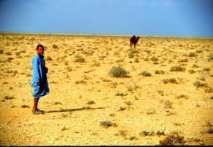 Γιγάντιο τείχος στην έρημο της Σαχάρα για μην περνάνε οι μετανάστες στην Ευρώπη προτείνει ο Ντόναλντ Τραμπ!
