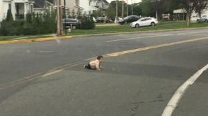 Μωρό μπουσούλαγε στη μέση του δρόμου – Tο έσωσε διερχόμενος οδηγός! [video]