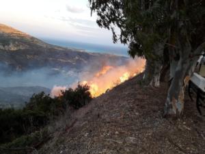 Κεφαλονιά: Μάχη με τη φωτιά – Υπεράνθρωπες προσπάθειες για να μην καούν σπίτια
