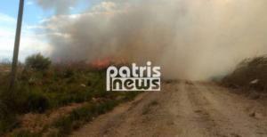 Πύργος: Μεγάλη φωτιά στη Σπιάτζα απειλεί σπίτια – Η μάχη των πυροσβεστών υπό αντίξοες συνθήκες!