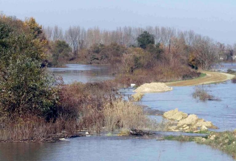 Τριπλή δολοφονία στον Έβρο! Ανήλικες ανάμεσα στα θύματα – Έκρυψαν τα πτώματα στις καλαμιές | Newsit.gr