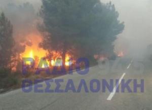 Συναγερμός στη Χαλκιδική: Ανεξέλεγκτη φωτιά στη Σιθωνία