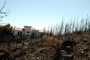 Άλλη μια μήνυση κατά παντός υπευθύνου για την φονική πυρκαγιά της 23ης Ιουλίου