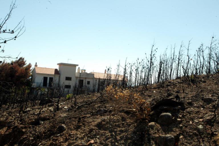 Άλλη μια μήνυση κατά παντός υπευθύνου για την φονική πυρκαγιά της 23ης Ιουλίου | Newsit.gr