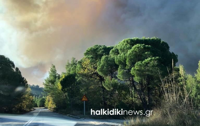 Στα τρία χιλιόμετρα έχουν απλωθεί οι φλόγες στη Σιθωνία! Δύσκολη μάχη με φωτιά και αέρα – video   Newsit.gr