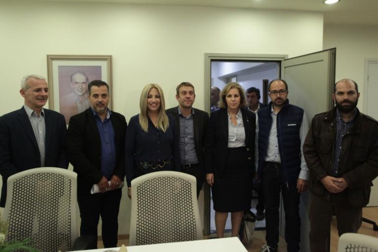 Φώφη Γεννηματά: «Οι Έλληνες δεν αισθάνονται ασφαλείς στα σπίτια τους» | Newsit.gr