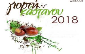 Σε γιορτινό κλίμα η Άρτα – Τσίπουρο και κάστανα…. για όλους!