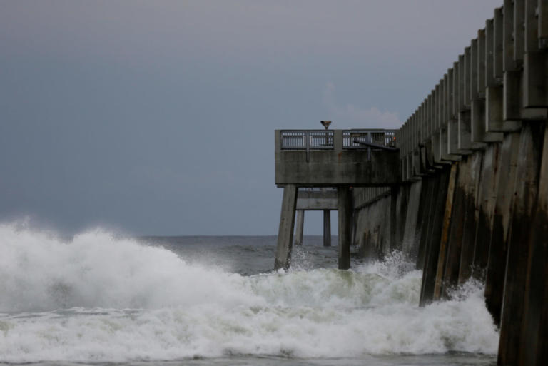 Τρόμος από τον τυφώνα Μάικλ στις ΗΠΑ – Θα ανέβει 4 μέτρα η στάθμη της θάλασσας!   Newsit.gr