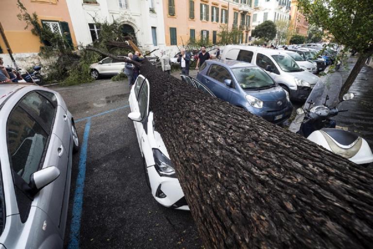 4 νεκροί από τη φονική κακοκαιρία στην Ιταλία! – Καταπλακώθηκαν από δέντρα!   Newsit.gr