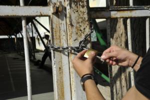 Λαμία: Αυγά και νεράντζια σε υπό κατάληψη σχολείο – Η επίθεση αγνώστων και η πορεία των ερευνών [pics]
