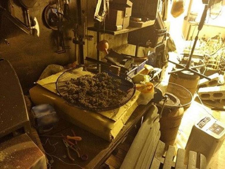 Μαγνησία: Τον συνέλαβαν και βρήκαν σπίτι του ένα ολόκληρο εργοστάσιο καλλιέργειας κάνναβης! | Newsit.gr