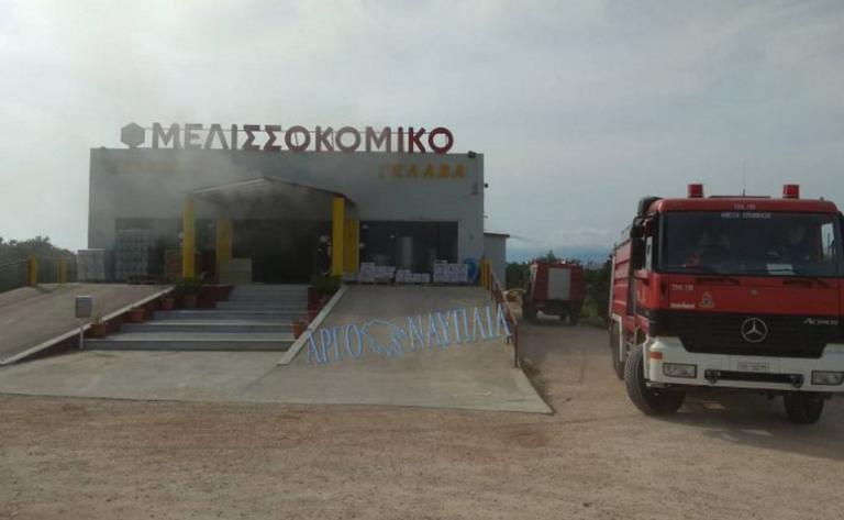 Αργολίδα: Εικόνες από τη μεγάλη φωτιά στο Μελισσοκομικό Σταθμό – video | Newsit.gr