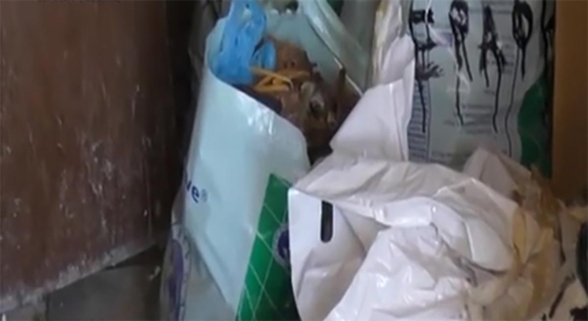 Εικόνες ντροπής στη Δράμα! Έβαζαν τα οστά νεκρών σε… πλαστικές σακούλες [pics] | Newsit.gr