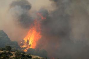 Φωτιά στην Χαλκιδική: «Πνίγει» τους κατοίκους ο καπνός – «Είναι καλύτερη η εικόνα» δηλώνει η Πολιτική Προστασία