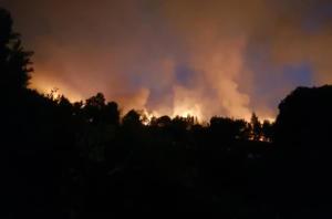 Χαλκιδική: Ολονύχτια μάχη με τις φλόγες – Σε ετοιμότητα μέχρι και τουριστικά πούλμαν για εκκένωση της Σάρτης