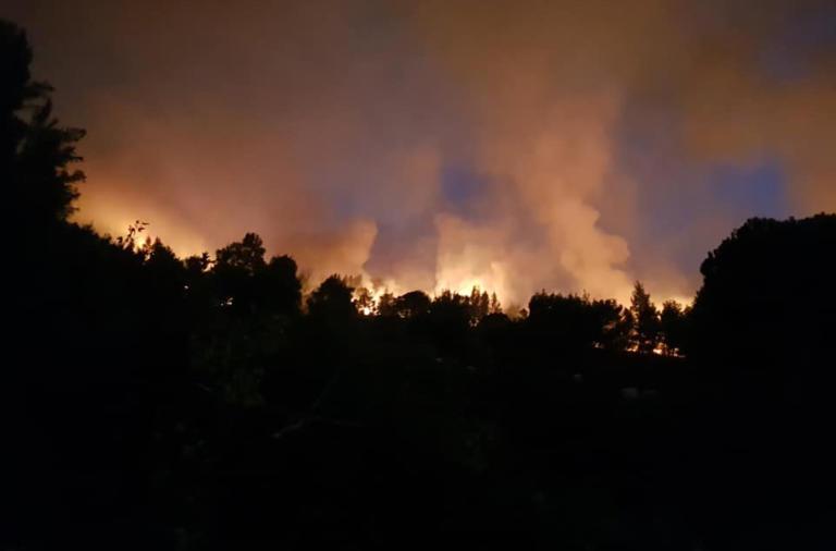 Χαλκιδική: Ολονύχτια μάχη με τις φλόγες – Σε ετοιμότητα μέχρι και τουριστικά πούλμαν για εκκένωση της Σάρτης | Newsit.gr
