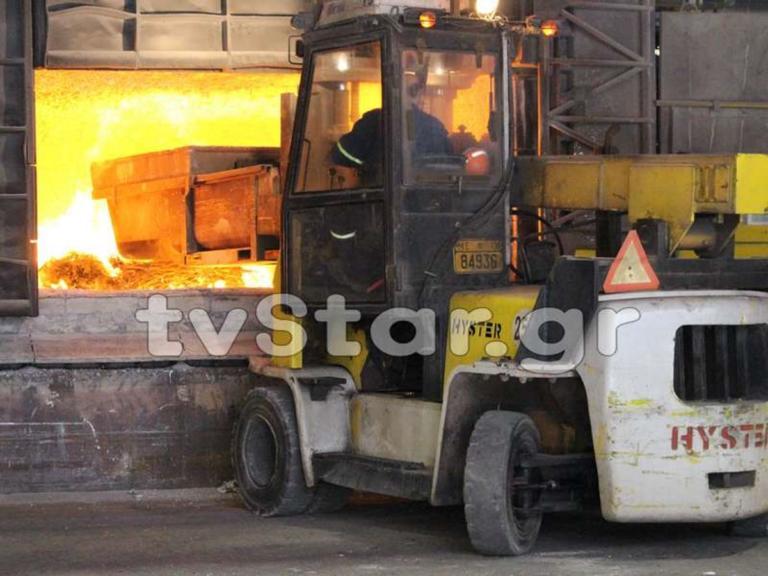 Στην πυρά τα χασισόδεντρα που βρέθηκαν στον Παρνασσό – video | Newsit.gr