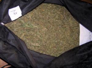 """Πάτρα: """"Μπλόκο"""" σε 400 κιλά κάνναβης"""