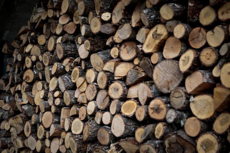 Αγρίνιο: Αντί για ξύλα… έκοψε το πόδι του με αλυσοπρίονο! | Newsit.gr