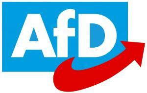 Σκάνδαλο με χρηματοδότηση του AfD στη Γερμανία – 130.000 ευρώ πήρε η αντιπρόεδρος