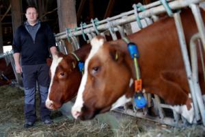Vegan ακτιβιστές μπούκαραν σε ταβέρνα και έκαναν ήχους αγελάδων μπροστά στα πιάτα με τις μπριζόλες! – Video