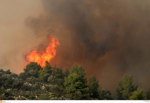 Μεγάλη φωτιά κοντά στο Ευηνοχώρι – Μάχη με φλόγες και ανέμους