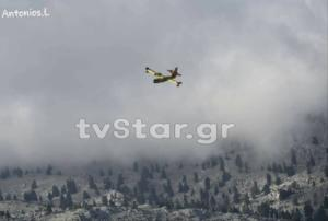 Καίγεται δάσος με έλατα στην Εύβοια – Στάχτη πάνω από 80 στρέμματα [pics]