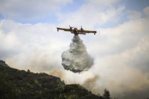 Κρήτη: Φωτιά σε πλαγιά στην Ιεράπετρα