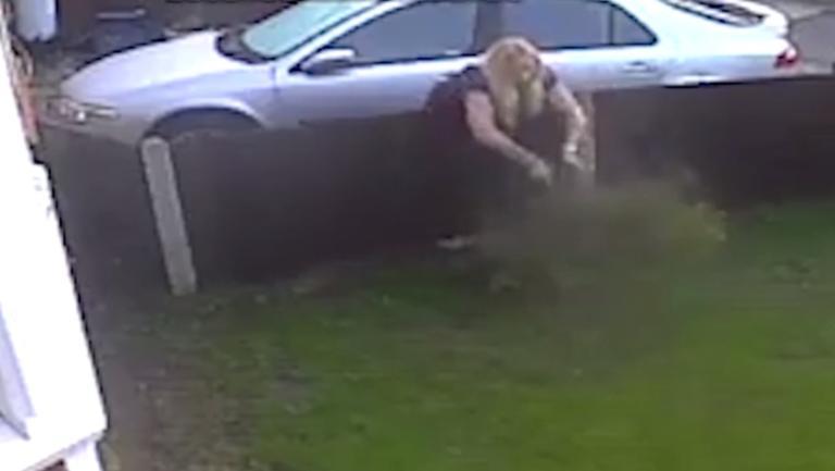 Γιατί καλέ γειτόνισσα; Πιάστηκε στα πράσα να καταστρέφει τον κήπο του διπλανού της! – Video | Newsit.gr