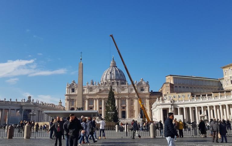 Στα Χριστουγεννιάτικα η Ρώμη! Στην πλατεία του Αγίου Πέτρου το παραδοσιακό έλατο! – Video | Newsit.gr