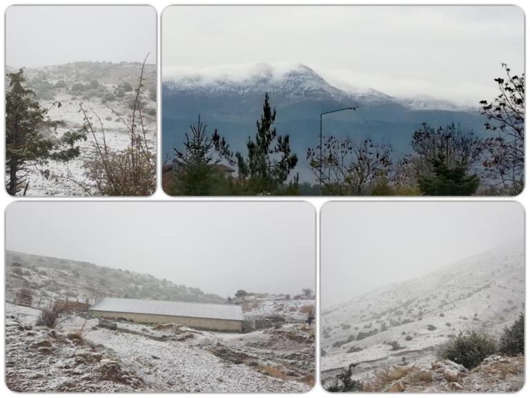 Χιόνια σε Ιωάννινα και Τρίκαλα – Οι πρώτες εικόνες | Newsit.gr
