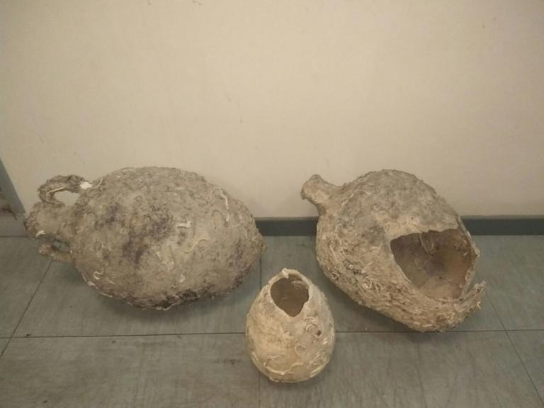 Κρήτη: Ψάρεψαν… αρχαίους αμφορείς! [pic] | Newsit.gr