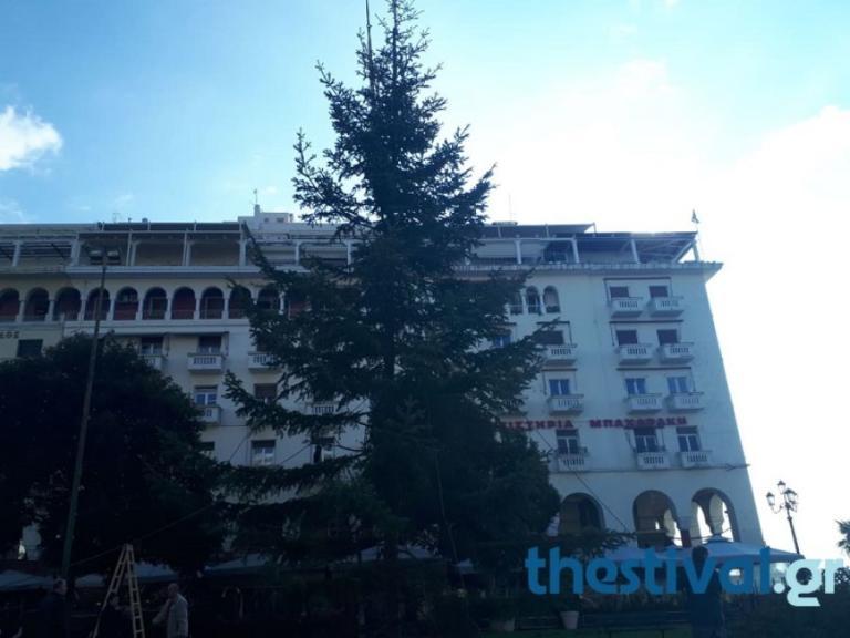 Θεσσαλονίκη: Αυτό είναι το χριστουγεννιάτικο δέντρο που στήθηκε στην πλατεία Αριστοτέλους [pics, video] | Newsit.gr