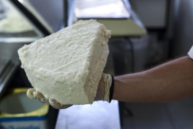 Λέσβος: Φέτα φτιαγμένη από κτηνοτρόφους – Αποφάσισαν να πάρουν την κατάσταση στα χέρια τους! | Newsit.gr