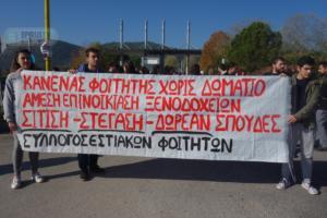 Γιάννενα: Φοιτητές έκλεισαν την πύλη του πανεπιστημίου – Βουνό τα προβλήματα που αντιμετωπίζουν – video