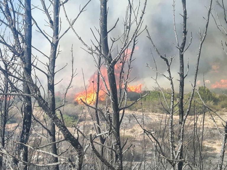 Ανεξέλεγκτη φωτιά μαίνεται στη Λεμεσό – Πυρκαγιά και στην Πάφο, κοντά σε σπίτια | Newsit.gr