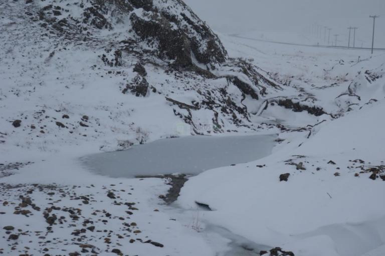 Όλα λευκά στα ορεινά Ιωάννινα [pics]