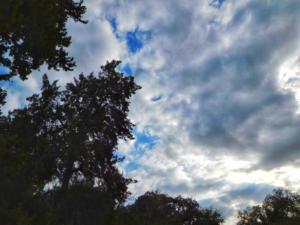 Καιρός: Συννεφιά, βροχές και ομίχλη