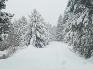 Καιρός: Κρύο και χιόνια σε όλη τη χώρα – Ποια σχολεία θα παραμείνουν κλειστά – Πού χρειάζονται αλυσίδες