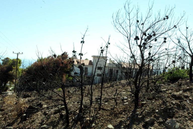 Στήριξη των πυρόπληκτων περιοχών με 1.000.000 από τον Μυτιληναίο | Newsit.gr
