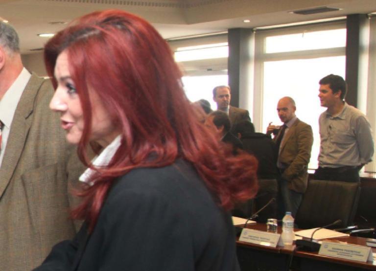 Ράικου κατά Τουλουπάκη – Προσέφυγε στο Ειδικό Δικαστήριο Κακοδικίας! | Newsit.gr