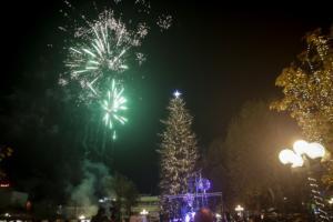 Η… αθάνατη σεκόγια 33 μέτρων που στέκει στο κέντρο της ελληνικής πόλης και εντυπωσιάζει!
