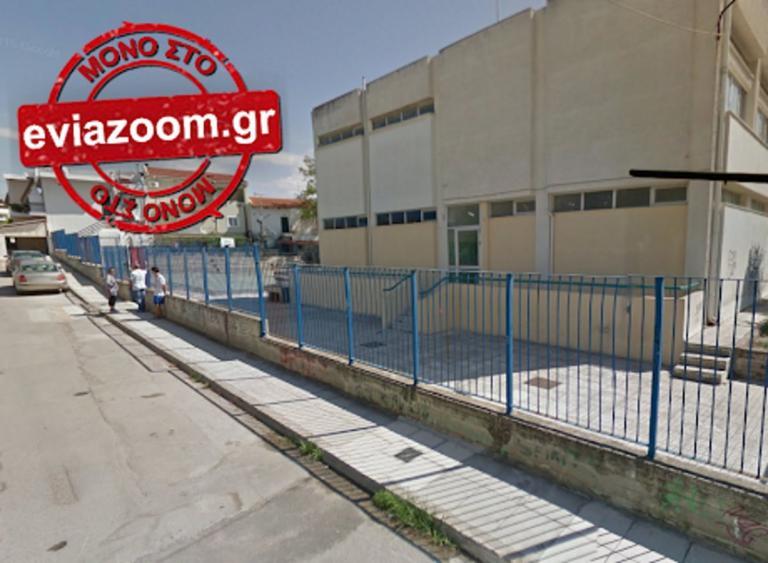 Χαλκίδα: Πυροβόλησε σκύλους έξω από σχολείο!   Newsit.gr