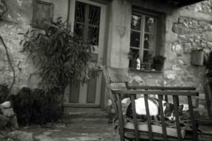 Θεσσαλονίκη: Η απαγωγή 16χρονου και το μεγάλο λάθος των δραστών – Η απροσεξία που έλυσε τον γρίφο!