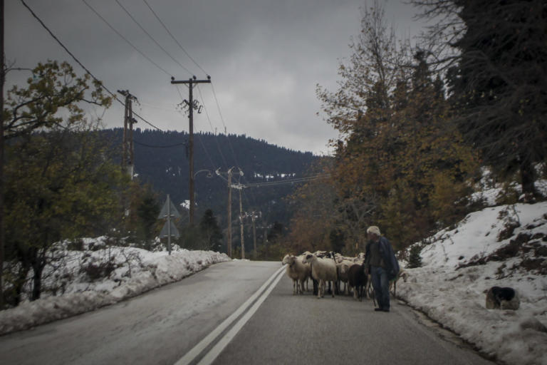 Τρίκαλα: Βοσκοί έμειναν θαμμένοι 18 ώρες στο χιόνι